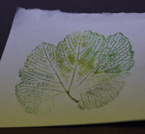 LeafInkPrintCard_5