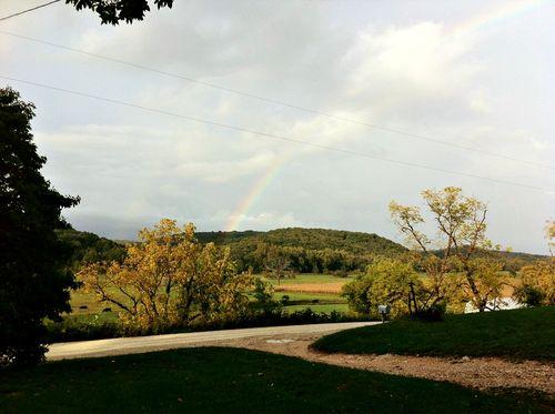 Rainbow twcq